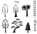 trees 66065558