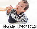 赤ちゃんと部屋 66078712