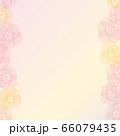 花の背景 66079435
