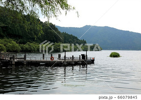 湖北:余呉の湖散策・98滋賀県長浜市) 66079845