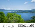 新緑の十和田湖 - 紫明亭展望台 66081165