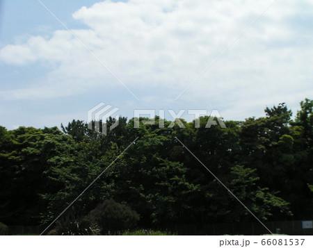 初夏の青空と白い雲 66081537