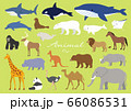 大きい動物 66086531