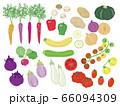外国の野菜のイラストセット 66094309