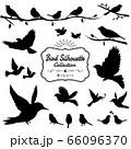 鳥シルエットA 66096370