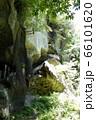 垂水遺跡 66101620