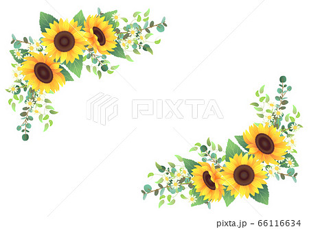 ひまわりと色々な植物を装飾したフレーム 66116634
