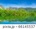 新緑の上高地 大正池と焼岳 【長野県】 66145537