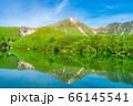 新緑の上高地 大正池と焼岳 【長野県】 66145541