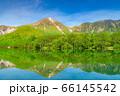 新緑の上高地 大正池と焼岳 【長野県】 66145542