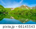 新緑の上高地 大正池と焼岳 【長野県】 66145543