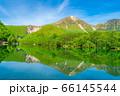 新緑の上高地 大正池と焼岳 【長野県】 66145544