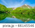 新緑の上高地 大正池と焼岳 【長野県】 66145546