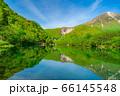 新緑の上高地 大正池と焼岳 【長野県】 66145548