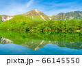 新緑の上高地 大正池と焼岳 【長野県】 66145550