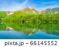 新緑の上高地 大正池と焼岳 【長野県】 66145552