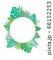 トロピカルリーフの丸のフレーム(南国の植物)-png 66152253