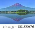 河口湖畔からの夏の富士山-777584 66155976