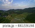 日本棚田百選「大垪和西の棚田」 66159198