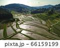 日本棚田百選「大垪和西の棚田」 66159199