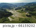 日本棚田百選「大垪和西の棚田」 66159202