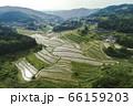 日本棚田百選「大垪和西の棚田」 66159203
