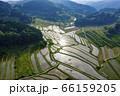 日本棚田百選「大垪和西の棚田」 66159205