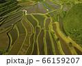 日本棚田百選「大垪和西の棚田」 66159207