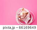 ダイエット 66169649