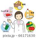 五大栄養素 66171630