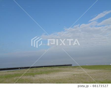 六月の青い空と白い雲 66173527