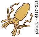R:メルヘンなかわいい深海魚 ダイオウイカ 1 66174218