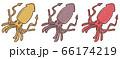 R:メルヘンなかわいい深海魚 ダイオウイカ  66174219