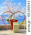 桜満開 尾道 恋人の聖地 水彩風イラスト 66186643