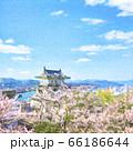 桜満開 尾道城 水彩風イラスト( 輪郭弱 ) 66186644