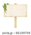 ツタが絡んだ木製の看板 66199709