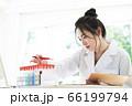 研究をする白衣の若い女性 66199794