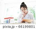 研究をする白衣の若い女性 66199801