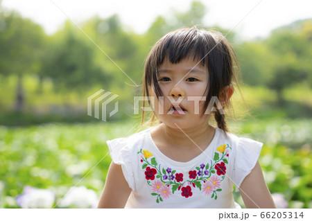 いろいろな表情をする女の子 訴える顔 66205314