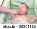 沐浴する赤ちゃん 66205380