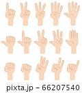 指で数字を数える手のバリエーションセット 66207540