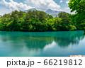 初夏の毘沙門沼(五色沼)の風景 新緑と湖面 福島県北塩原村 66219812