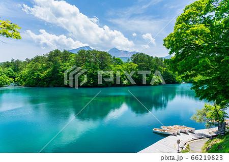 初夏の毘沙門沼(五色沼)の風景 新緑と湖面 福島県北塩原村 66219823
