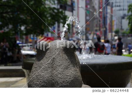 東京体得にある上野恩賜公園のカエルの噴水 66224448