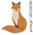 キツネ 狐 きつね 座っている イラスト 水彩 素材 66226280