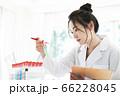 女性 白衣 研究 実験 試験管 66228045