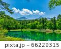 五色沼自然探勝路の新緑風景 るり沼と磐梯山 福島県北塩原村 66229315