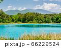 初夏の五色沼自然探勝路の風景 弁天沼と西吾妻山 福島県北塩原村 66229524