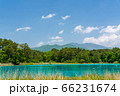 初夏の五色沼自然探勝路の風景 弁天沼と西吾妻山 福島県北塩原村 66231674