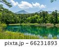 五色沼自然探勝路の新緑風景 るり沼と磐梯山 福島県北塩原村 66231893